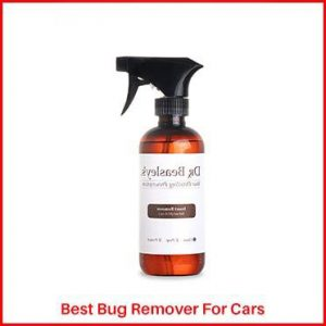 Dr. Beasley's Bug Remover for cars