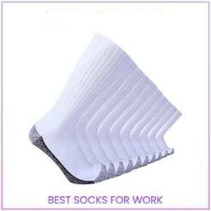 Enerwear Men's Cotton socks
