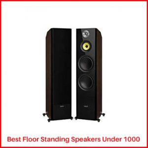 Fluance Signature Floor Speakers