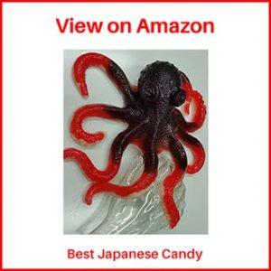The Gummy Bear Guy Best Japanese Candy