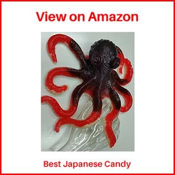 The Gummy Bear Guy Japanese Candy