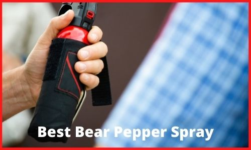Best Bear Pepper Spray