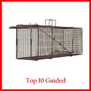 Northern Industries Professional Live Squirrel Trap